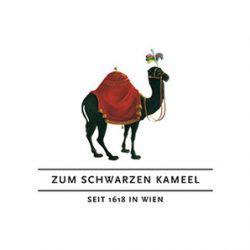 logo_schwarzes-kameel